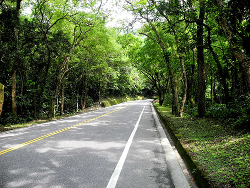 Road out of Dongao