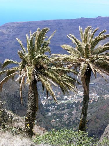 Barranco de las Lagunetas, La Gomera, Canary Islands