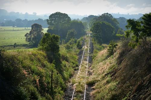 morning countryside glare tracks railway australia nsw derelict woodlawn abandonedrailway northernrivers morninglandscape wilsonsrivervalley casinomurwillumbahrailline