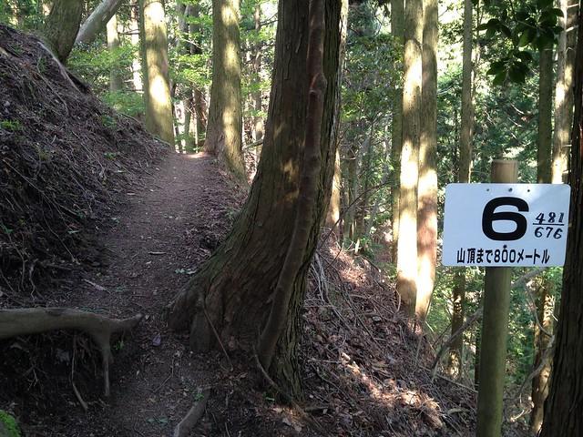 錫杖ヶ岳 加太コース No.6