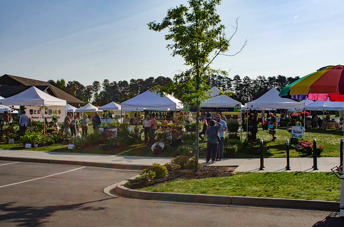 Travelers Rest Farmers Market-010