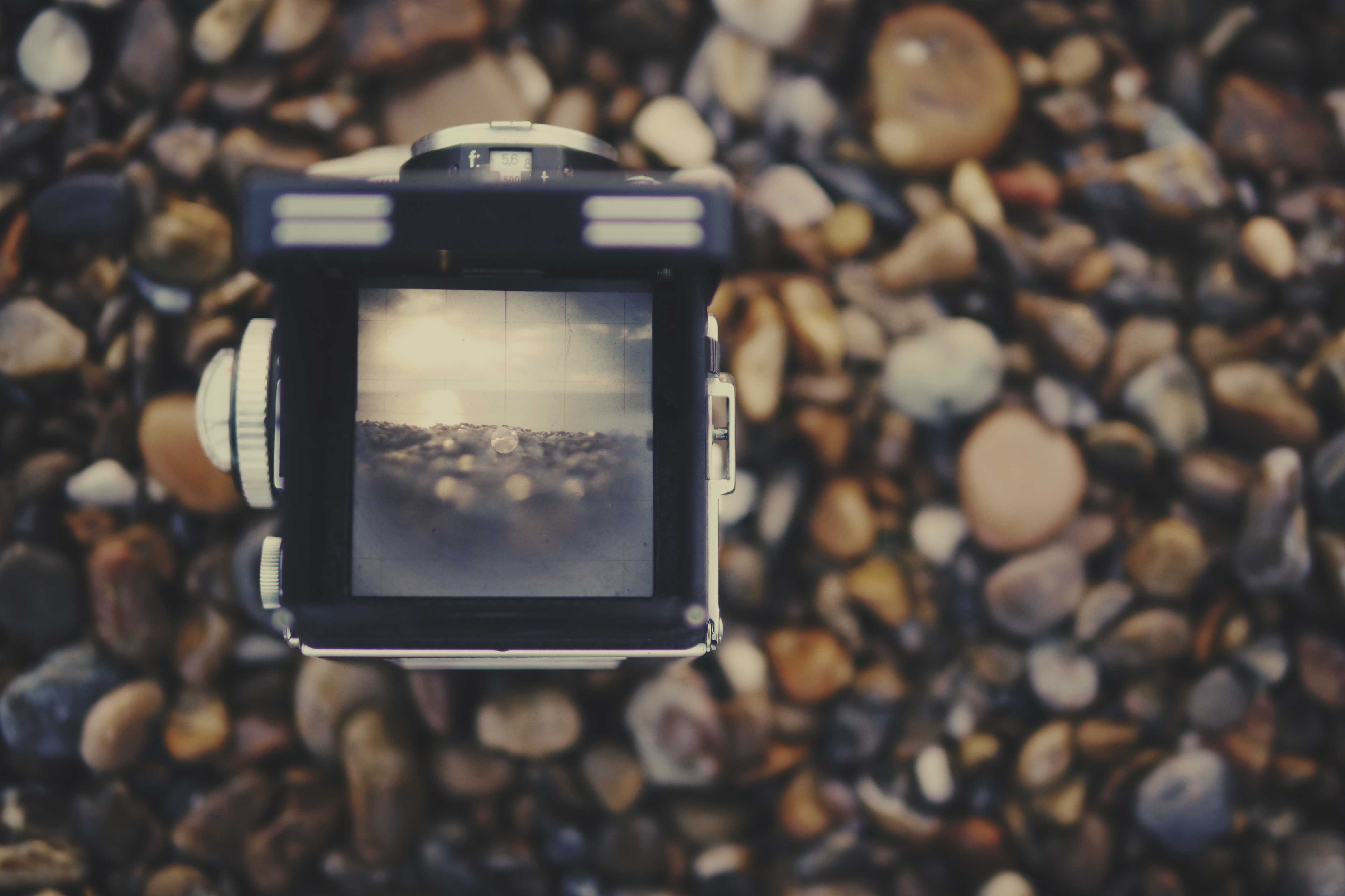 Missed Photographs