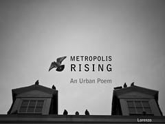 METROPOLIS RISING: An Urban Poem