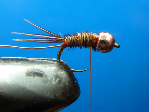 6798995190 75f87695f7 Pheasant Tail   How to?
