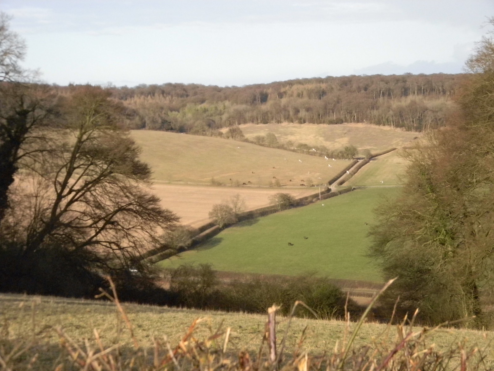 View into valley Saunderton Circular via West Wycombe