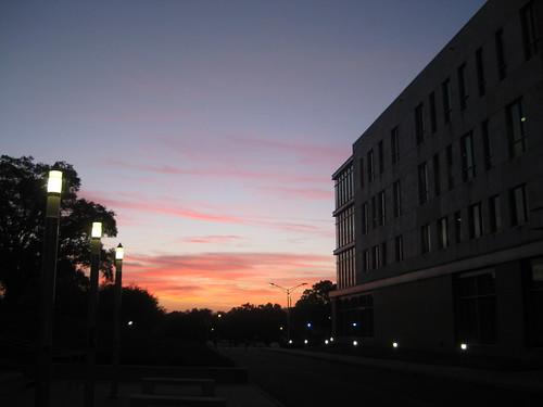 sunrise usf marshallstudentcenter