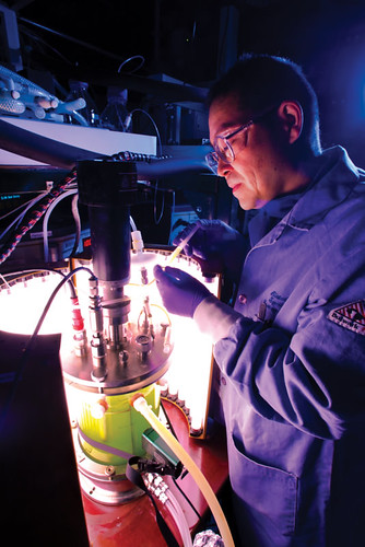 A specialist in algae science works on biofuel production