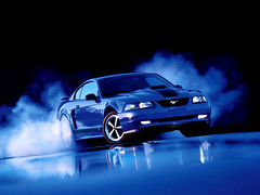 Ford_Mustang_Cobra