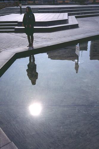 Sunlight&Shadow
