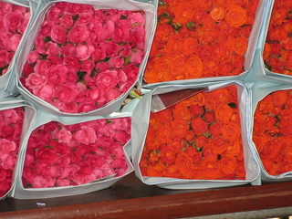 Roses at the Flower Market-2