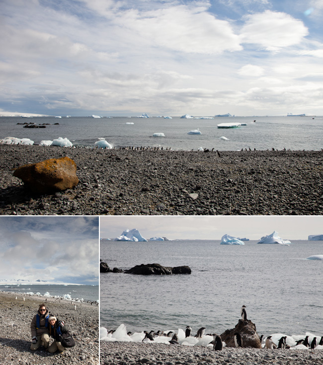 antarctica-blog-22