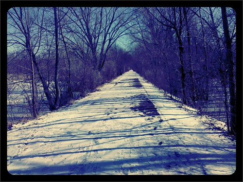Old Plank Road Trail