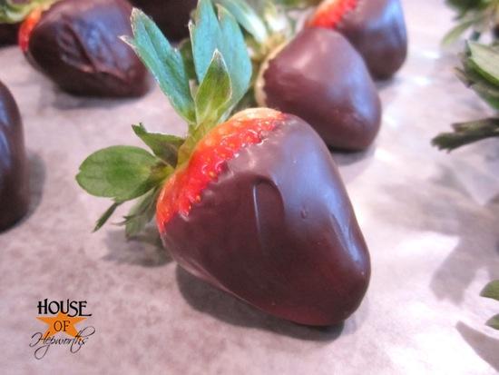 chocolate_covered_strawberries_hoh_12