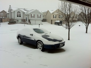 Cars looking cold