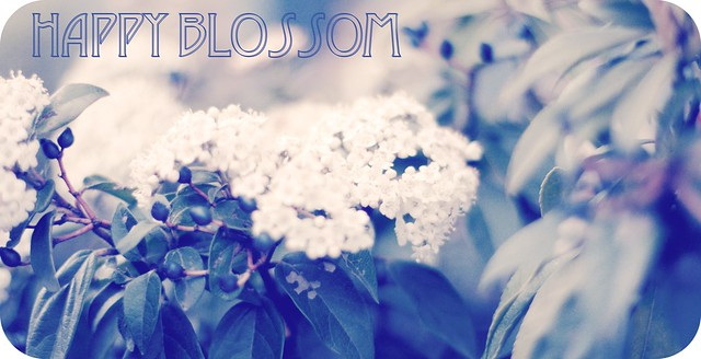 happyblossom1