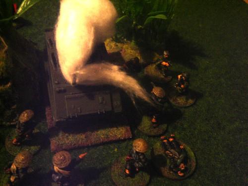 VC overwhelm M113
