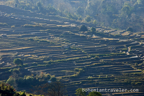 Yuanyang Rice Terraces around Xinjie China 6