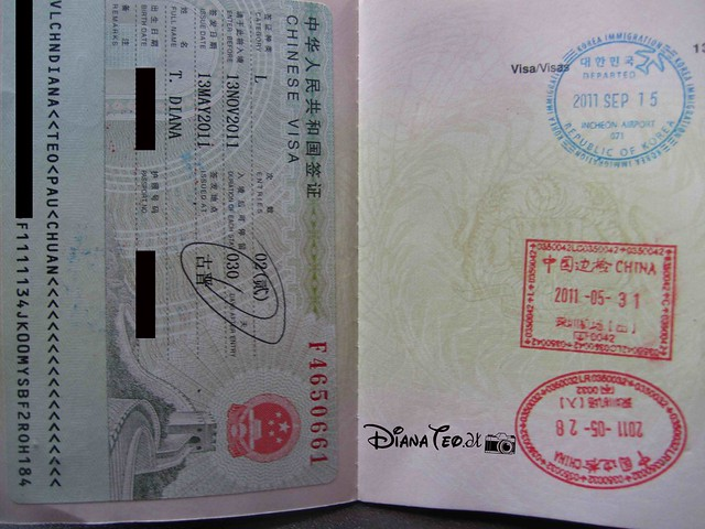 Passport Stamp Collection 05