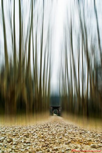 Un petit chemin……….. un rêve vers Ailleurs by Alphagard