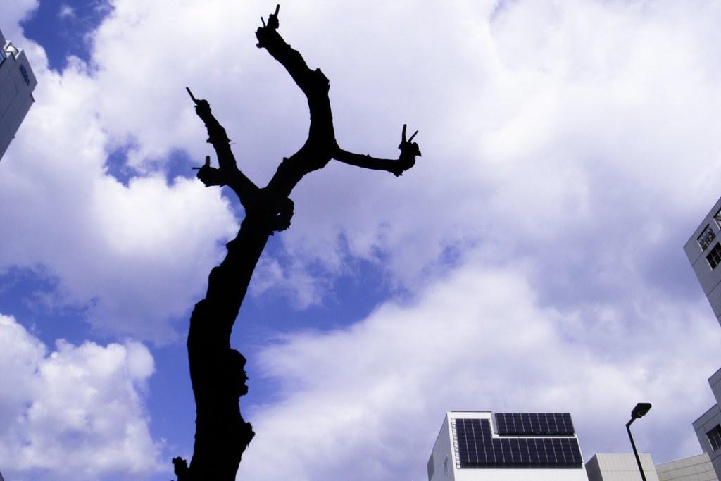 2012-02-17の空