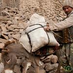 Iranian Man and Donkey - Kandovan, Iran