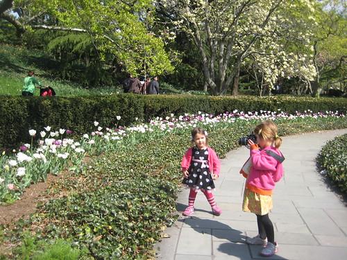Magnolia Plaza Flower Beds