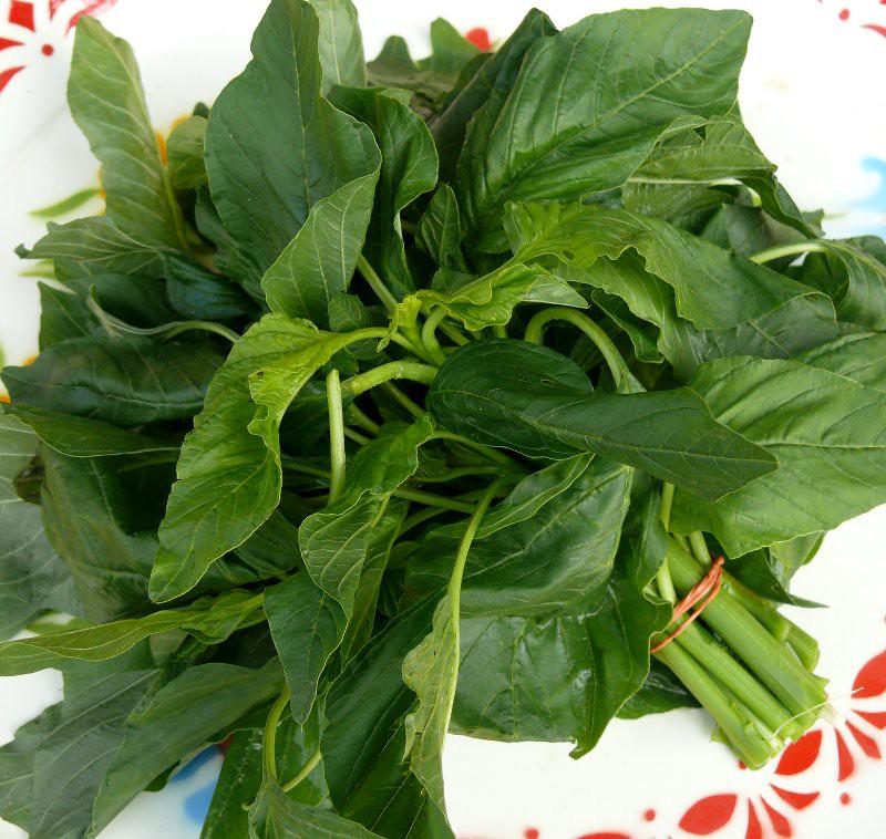 Pak Khom, Thai spinach | תרד תאי