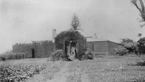 Garden of the old superintendant house, St. Helena, 1928