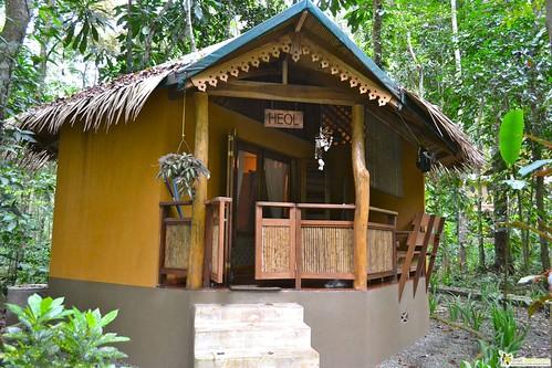 Family Friendly Jungle Lodge in Puerto Viejo costa rica