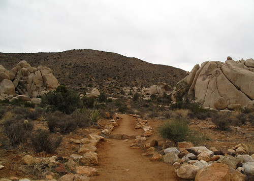 At the Ryan Mountain trail head