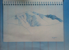 Accidental Inspiration for Colorado Drawing (Aspen) by randubnick