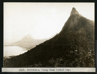 Mary Agnes Chase's Field Work in Brazil, Image No. 1947. Corcovado, steep face toward bay.
