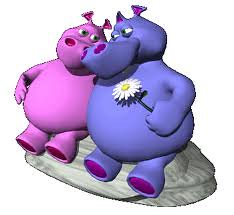 pareja hipopotamos