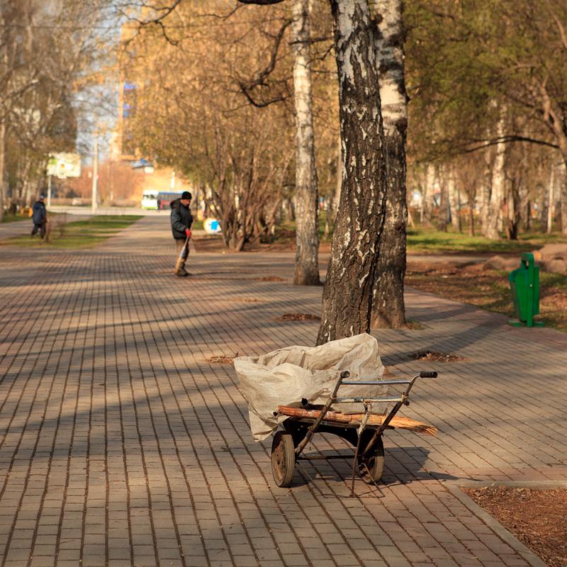 Весенняя природа. Парк