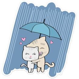 a4302bb4-b7fe-4c47-abfa-054f414878f1-allie_rain