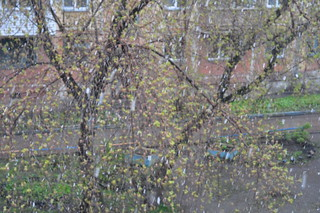 snow in may1