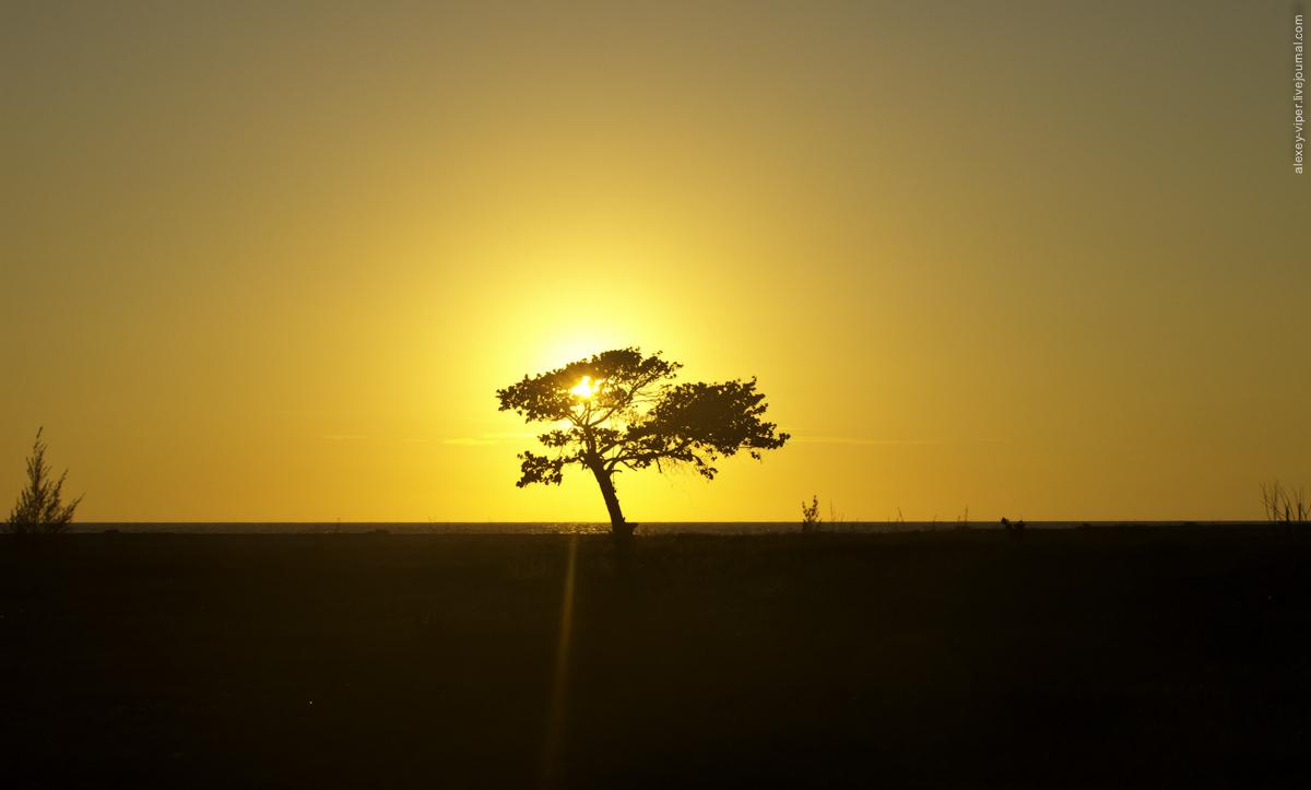 2012.01.12-2012.01.26_dive_safari_[cuba]-travel-050