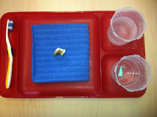 Elk Tooth Cleaning Work (Photo from Discovery Kidzone Montessori Adventures)