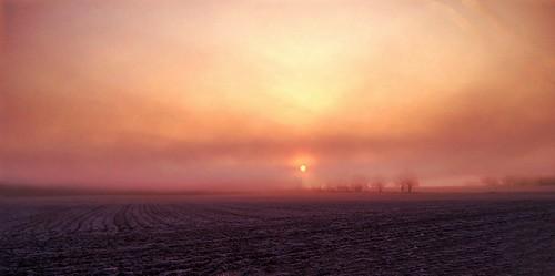 morning fog sunrise landscape indiana iphone365 photomobo
