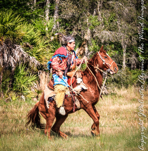 Seminole Chief-6458 by Against The Wind Images