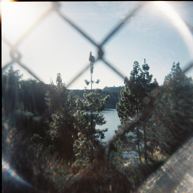 hollywood reservoir holga