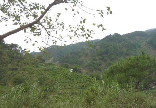 Luzon-Sagada-Bontoc-Banaue (55)