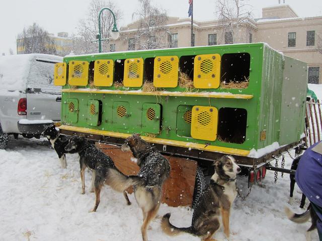 Anchorage Dog Show