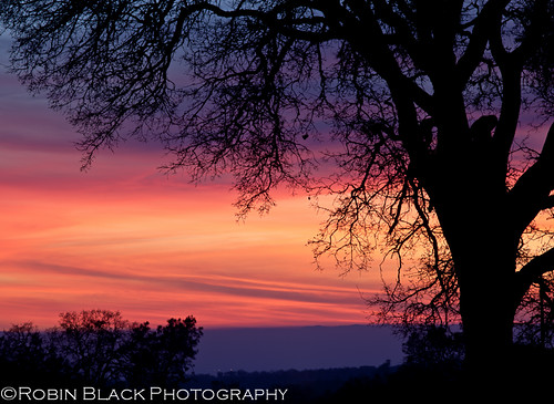 california pink sunset red sky color silhouette clouds landscape colorful purple ngc explore oaks naturesbest fiery oaktrees centralvalley nationalgeographic sierrafoothills dramaticlight catheysvalley explored outdoorphotographer canon5dmarkii robinblackphotography