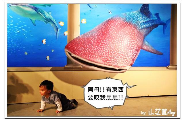 [3D展]高雄駁二藝術特區奇幻不思議日本3D幻視藝術畫展IMG_8021