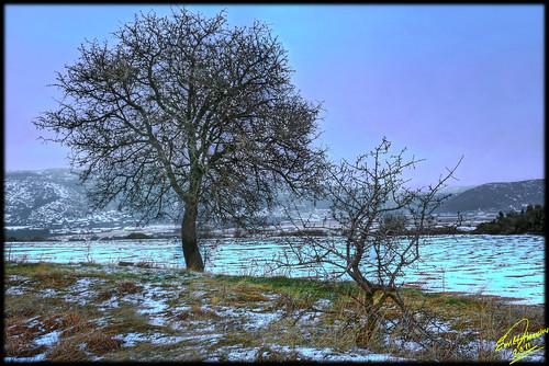 winter geotagged mygearandme ringexcellence flickrstruereflection1 flickrstruereflection2 geo:lat=41162791628474224 geo:lon=2430078681436919