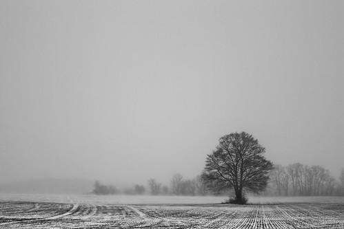 winters return
