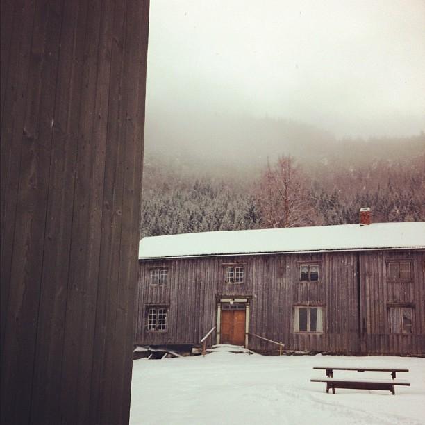 Klemetsaune i vinterdrakt