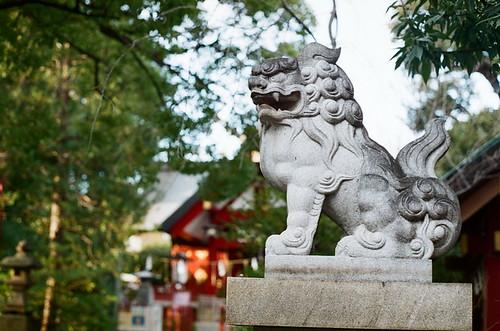 2012-0126-pentax-sl-fuji-xtra400-013