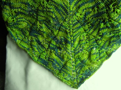 Gingko Shawl, Creatively Dyed yarn